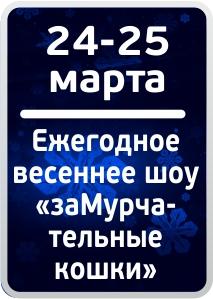 icon-mart-18-02