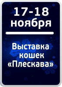 17-18-nov-vistovka-2018